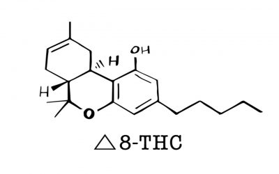 Understanding Cannabis Compounds: What is Delta-8?